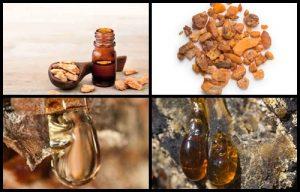 Aceite de Benjuí para que sirve, usos y propiedades