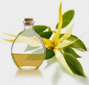 aceite esencial de ylang ylang para que sirve