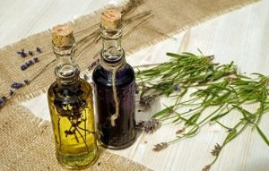 Beneficios y Preparación del Aceite de Lovage