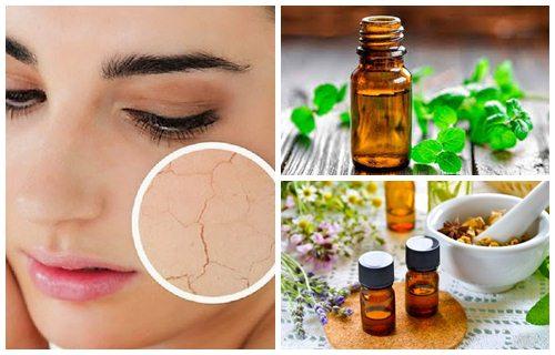 Los mejores aceites para piel seca