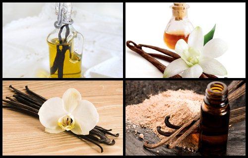 aceite esencial de vainilla casero