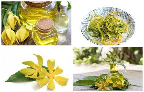 aceite de ylang ylang beneficios