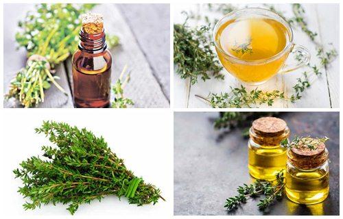 Cómo Hacer Aceite De Tomillo Para Qué Sirve Y Beneficios Aceites20