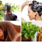 Aceite de ciprés para el cabello