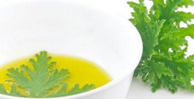 aceite de citronela beneficios