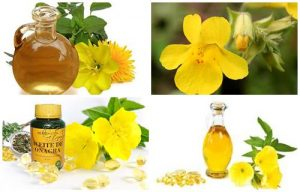 Aceite de onagra: usos, propiedades, beneficios y como tomar